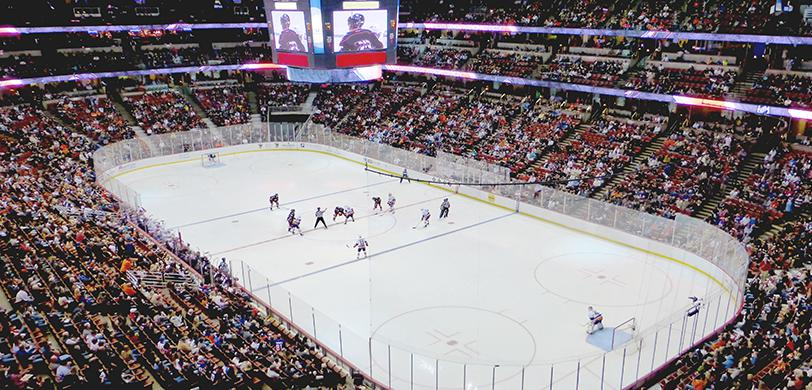 Anaheim Ducks Tickets 2019 20 Vivid Seats